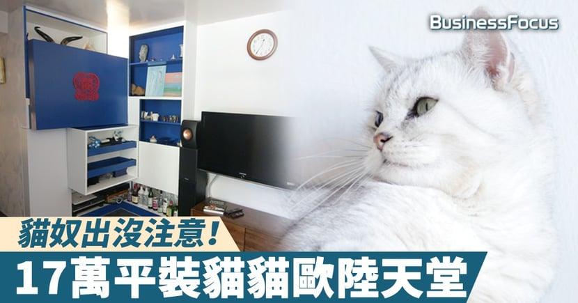 【主子萬歲】貓奴出沒注意!17萬平裝貓貓歐陸天堂