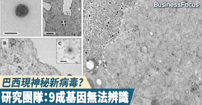 【武漢肺炎】巴西現神秘新病毒,科學家:9成基因無法辨識