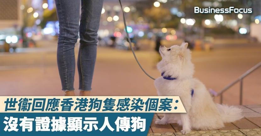 【武漢肺炎】世衞回應香港狗隻感染個案:沒有證據顯示人傳狗