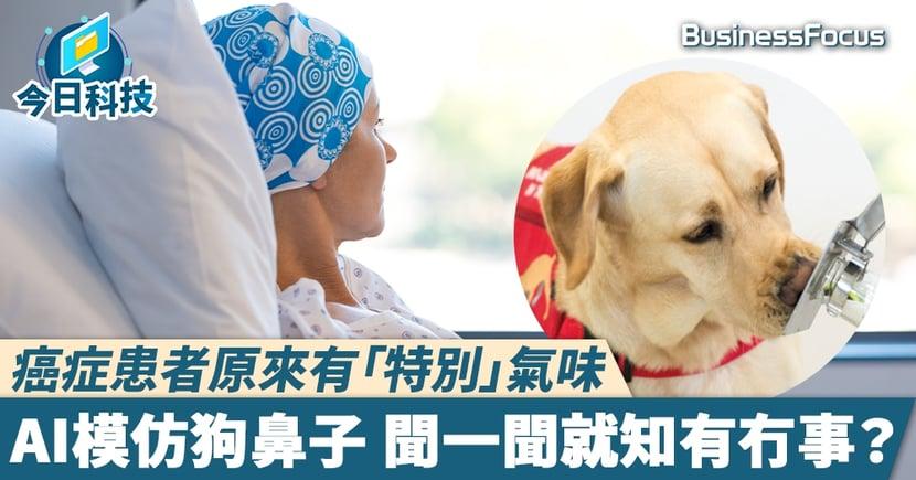 【AI狗鼻子】癌症患者原來有「特別」氣味   AI模仿狗鼻子 聞一聞就知有冇事?