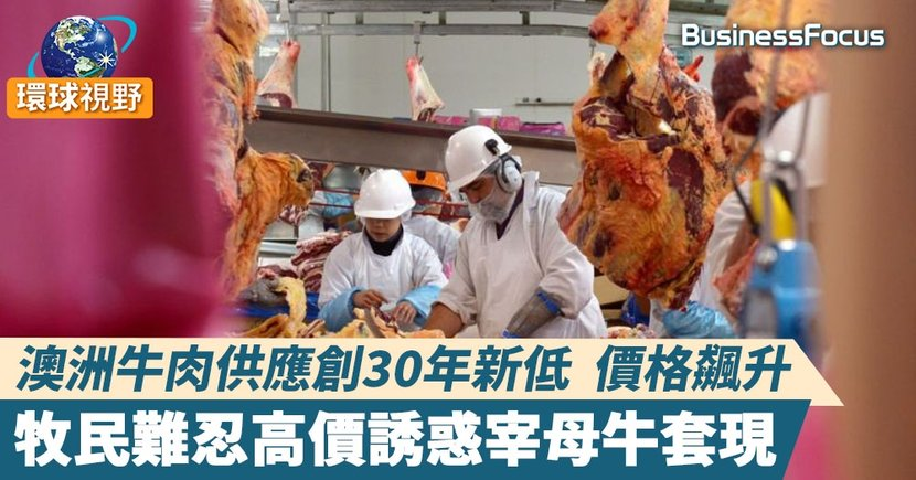 【澳洲牛肉】澳洲牛肉庫存不足以供應全球市場 或失去第二大出口供應商地位